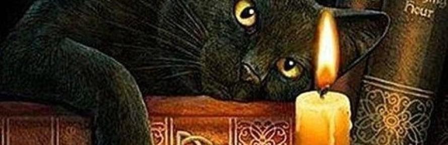 MiceLettrice's cover